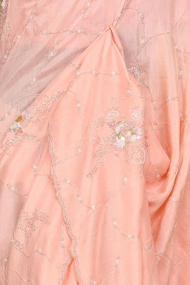 Peach Pink Pearl Embroidered Tussar Silk Saree-PG4101