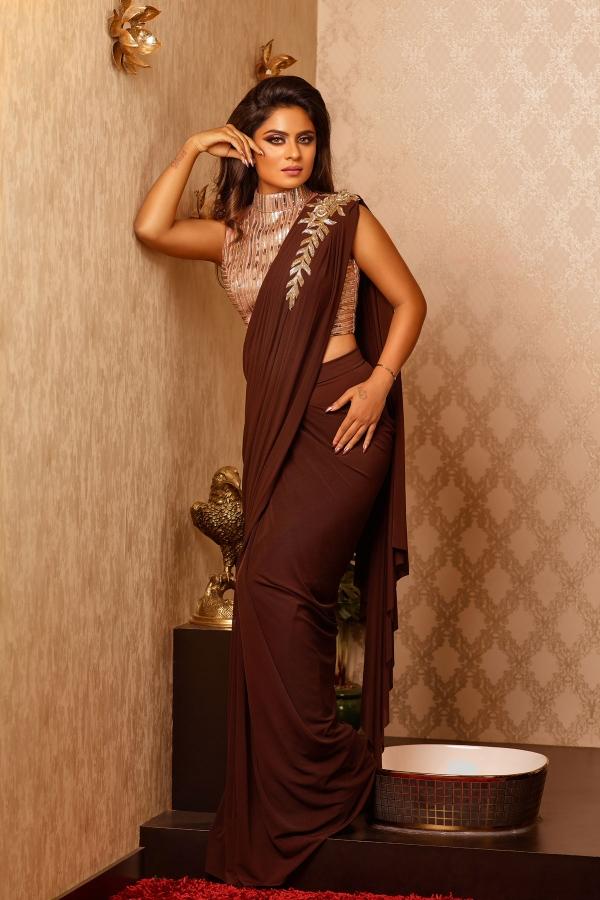 Brown Cutdana Lycra Saree-SR25614