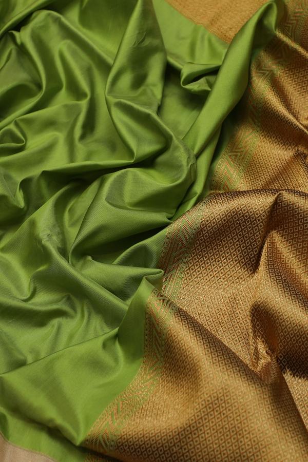 Pistachio Green Zari woven Banarasi Silk Saree-SR25802