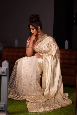 Beige Sequins Embroidered Satin & Net Saree-SR26172
